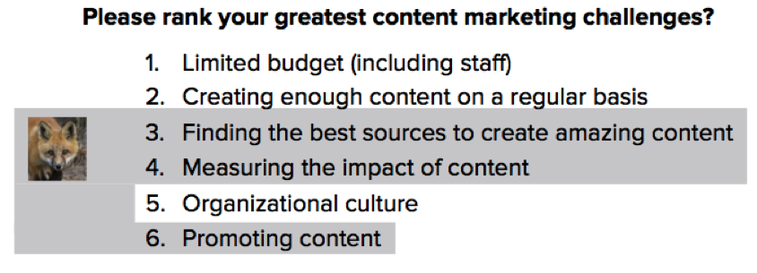 content marketing priorities