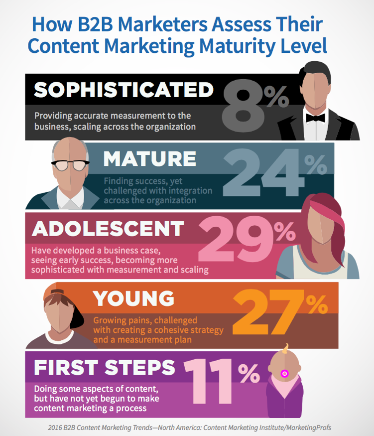 HowB2BMarketersAssessTheirMarketingMaturity