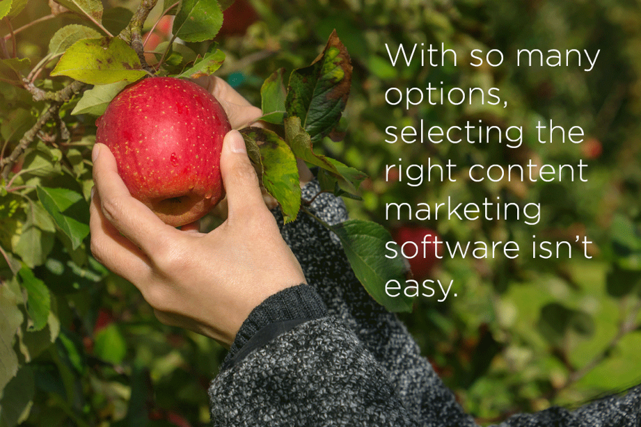 content marketing software selection