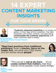 14 Expert Content Marketing Insights